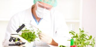 MSc Biochemistry & Food Technology YP Vacancies @ ICAR-CIPHET