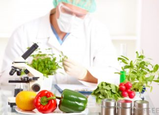 Food Tech Senior Research Fellowship/Research Associate