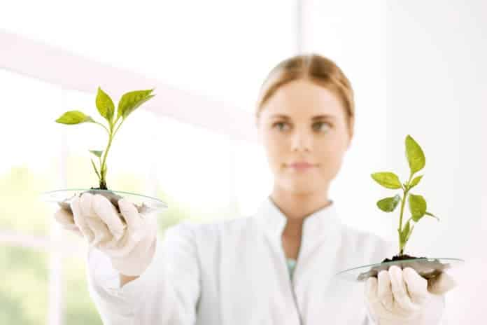Freshers Biotechnology Research Associate Job @ J Mitra & Co