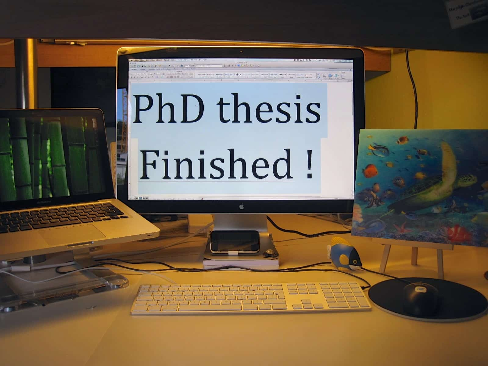 How to write a PhD Thesis Faster and Beat Deadlines