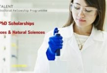 TALENT Doctoral Fellowship Programme
