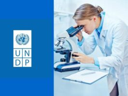 BSc Natural Sciences Research Consultant Post Vacant @ UNDP