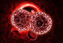 Universal Cancer Biomarker Discovered That Detects Cancer In 10 Mins