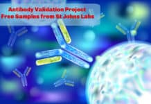Antibody Validation Project | Free Samples from St Johns Labs