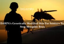 DARPA's Genetically Modified Skin For Soldiers To Stop Mosquito Bites