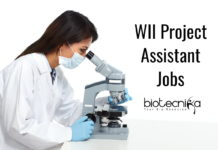 WII Project Assistant Jobs