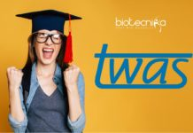 TWAS Research Fellowships 2019