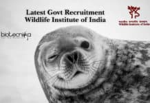 Latest Govt Recruitment