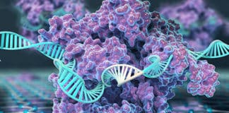 CRISPR-Chip detect Genetic Mutations