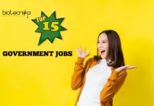 Government Jobs 2019