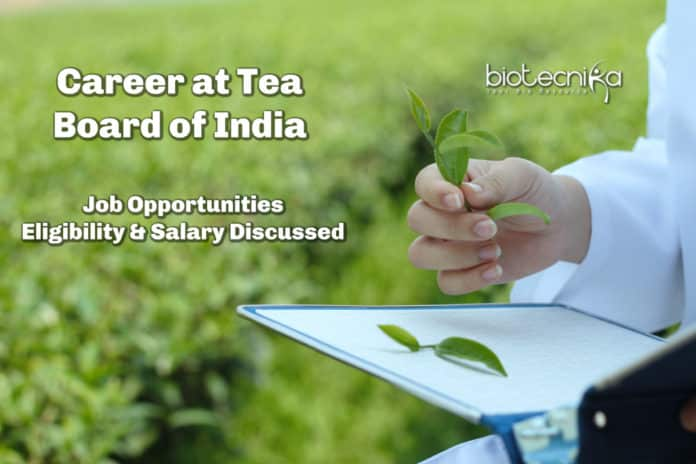 Career At Tea Board of India - Job Opportunities, Eligibility & Salary Discussed