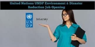 United Nations UNDP Environment