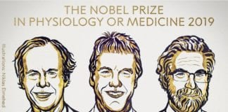 Nobel Prize in Medicine 2019 Awarded for Research on How Cells Manage Oxygen