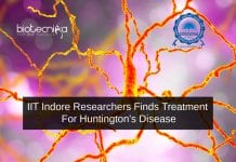 IIT Researchers Treatment For Huntington's