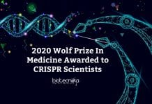 Wolf Prize to CRISPR Scientists