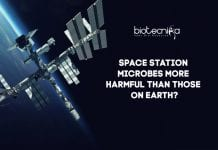 Are-Space-Station-Microbes-Harmfu