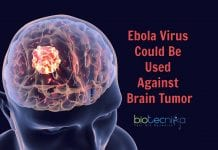 Ebola Virus to fight cancer