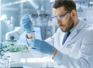 NEHU Microbiology Jobs