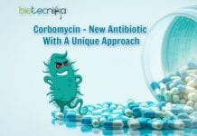 New antibiotic for antibiotic resistant bacteria