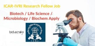ICAR-IVRI Research Fellow Job