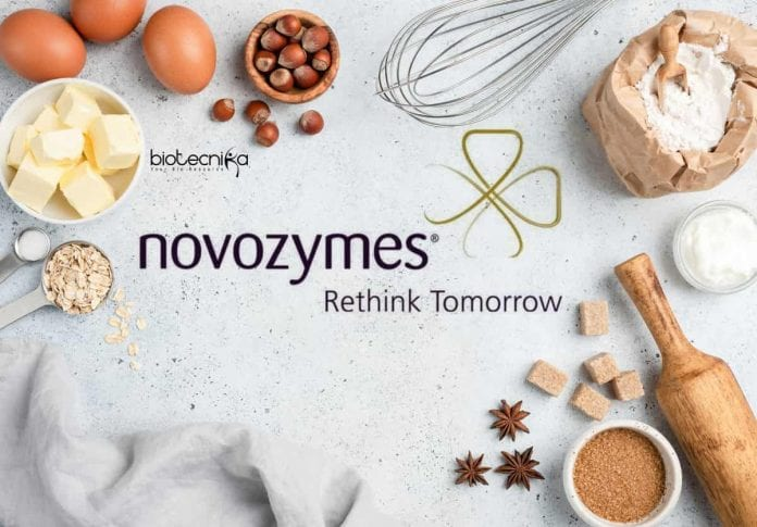 Novozymes Food Tech Jobs
