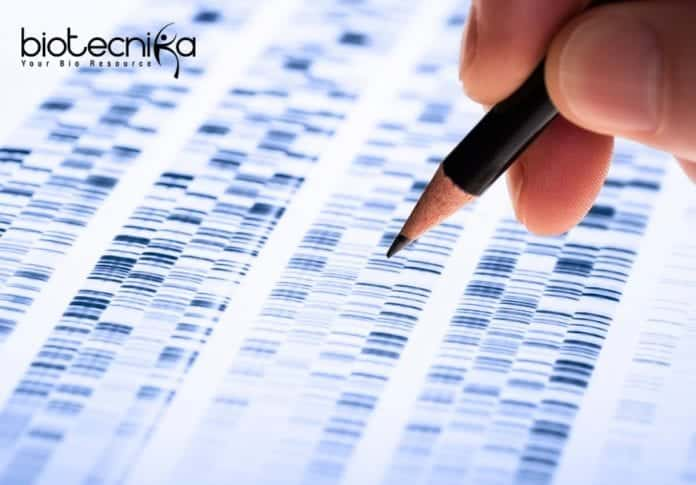 Freshers Syngene Genetic Toxicology