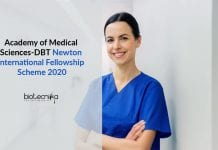 AMS-DBT Newton International Fellowship
