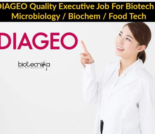 DIAGEO Quality Executive Job