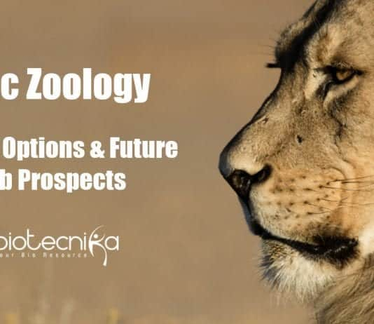Career Options After MSc Zoology