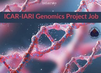 ICAR-IARI Genomics Project Job