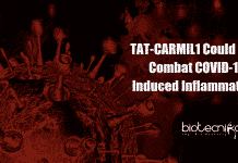 TAT CARMIL1 could combat COVID-19