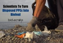 Biofuel from Disposed PPE