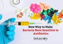 Making Bacteria More Sensitive to Antibiotics