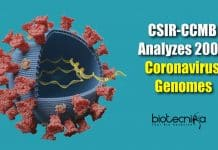 2000 coronavirus genomes analyzed (3)
