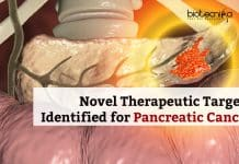 Therapeutic Targets for Pancreatic Cancer