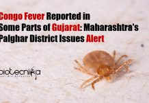 Congo Fever in Palghar District
