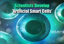 Artificial Smart Cells
