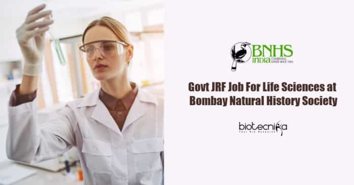 Lifesciences Jobs