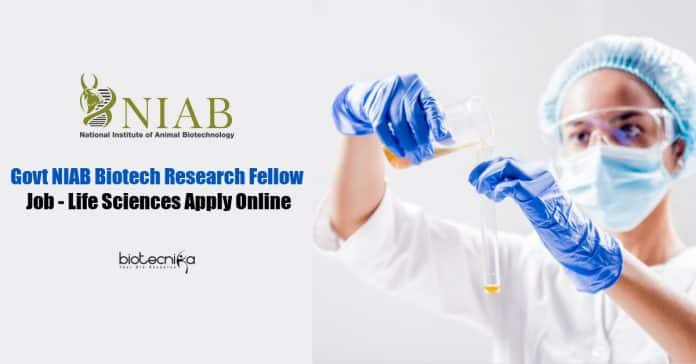 NIAB Biotech Research Fellow