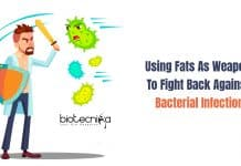 Body Fats Fight Back Against Bacterial Infection
