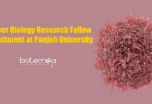 Cancer Biology Research Fellow
