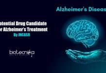Potential drug candidate for Alzheimer's