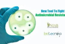 Fighting antimicrobial resistance
