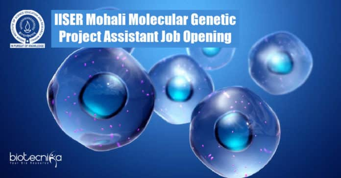 IISER Mohali Molecular Genetic