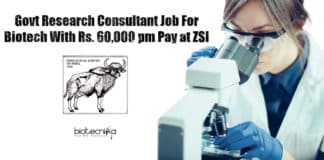 ZSI Research Jobs